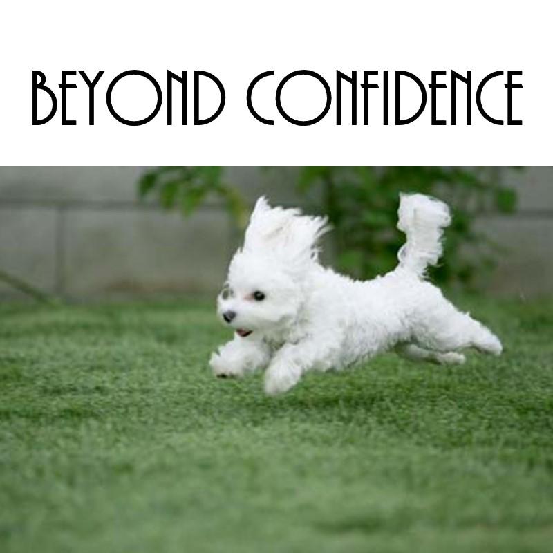 Go beyond confidence