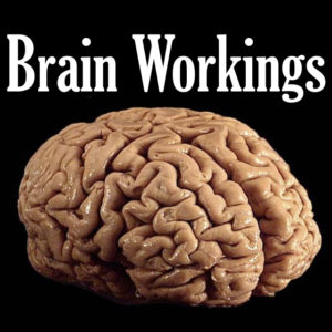 Brain Workings