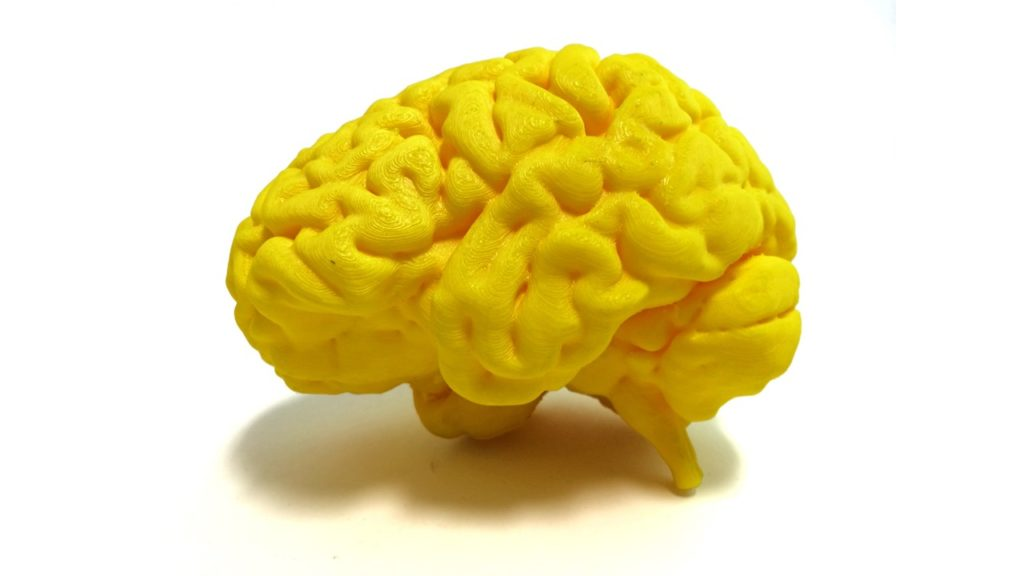yellow brain